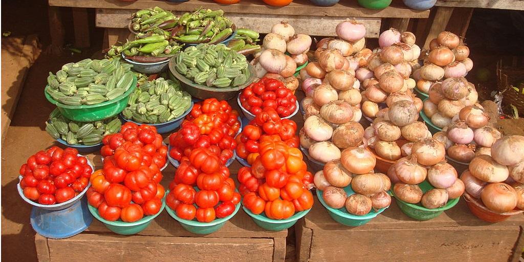Illustration de l'article sur l'appel à projet pour la promotion a l'agriculture en Afrique Ouest
